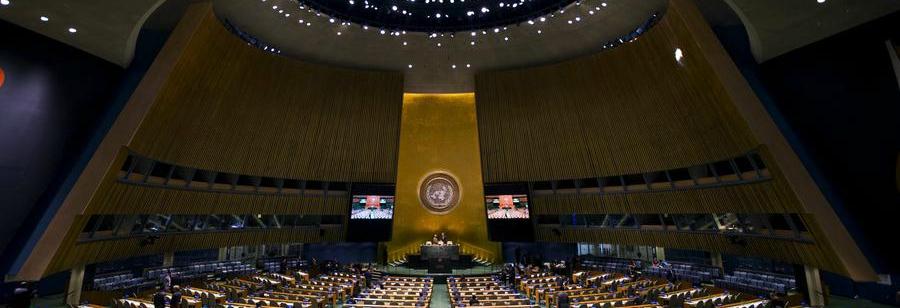 LGBT aktyvistų pergalė JTO prieš oponentus, ginančius šeimą