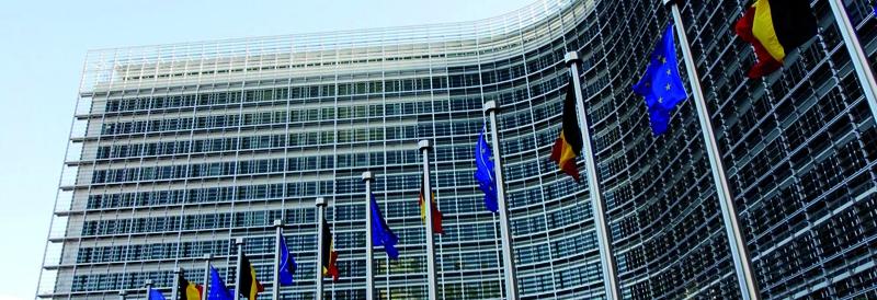 LGBT aktyvistų neapykantos strėlės ES komisarui