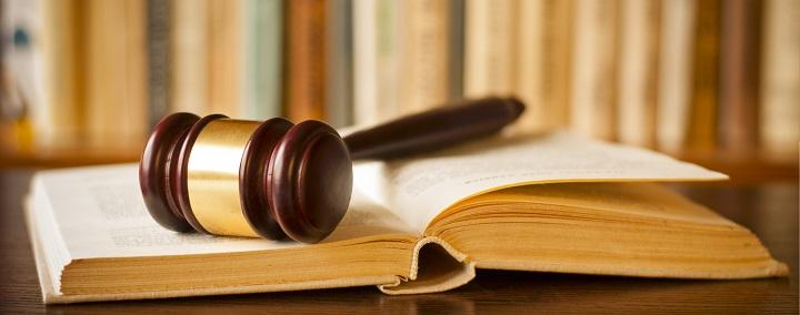 Apie Europos Žmogaus Teisių Teismą – iš pirmų lūpų (II dalis)