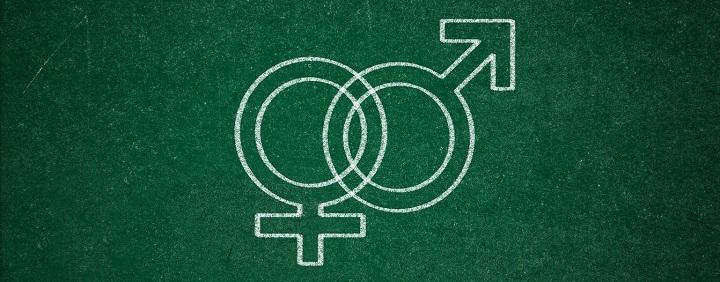 ŠMM apie LGBT propagandą Lietuvos mokyklose