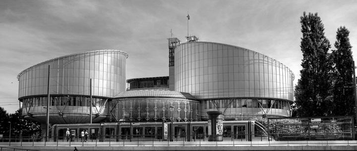 Pateikta ataskaita apie Europos Žmogaus Teisių Teismo teisėjų ir nevyriausybinių organizacijų ryšius